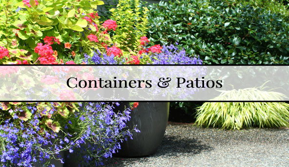 containerspatios